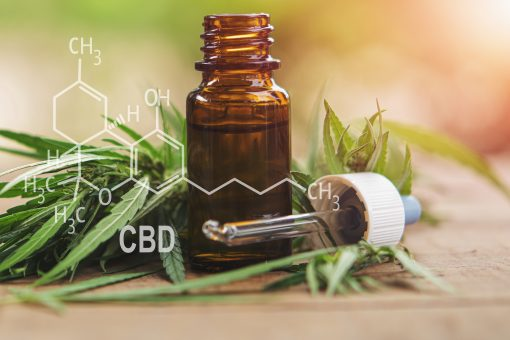 Cannabis herb and leaves with oil extracts in jars. medical concept – formula CBD